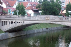 Run Slovenia 2019